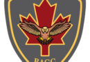The Canadian Combat Support Brigade